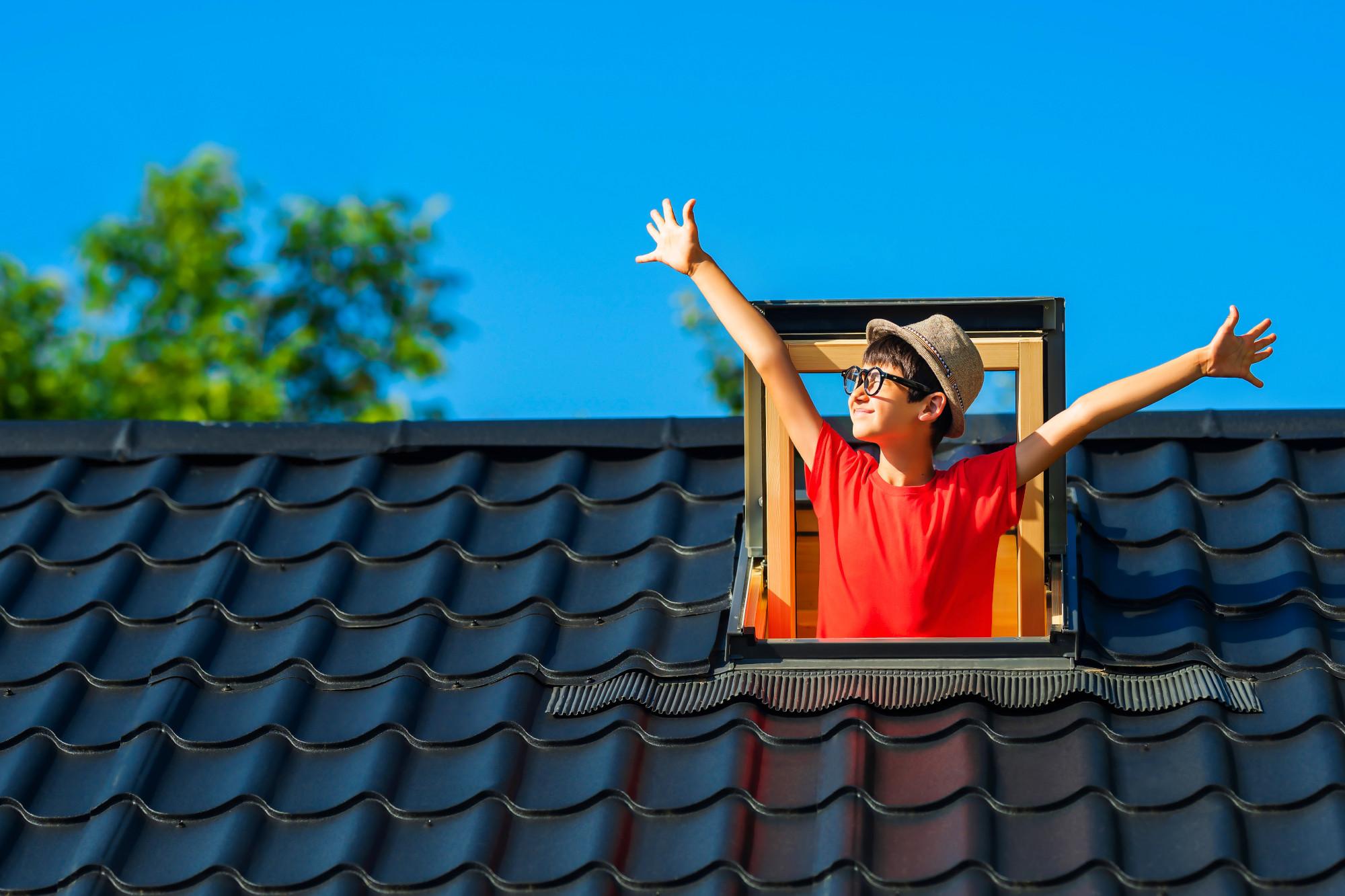 dachfenster-mit-junge-small